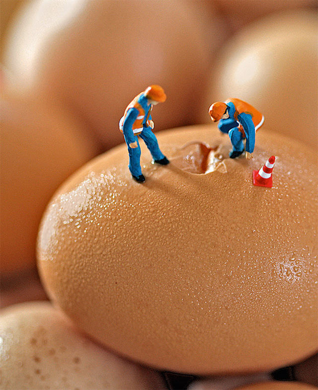Men at work on large egg